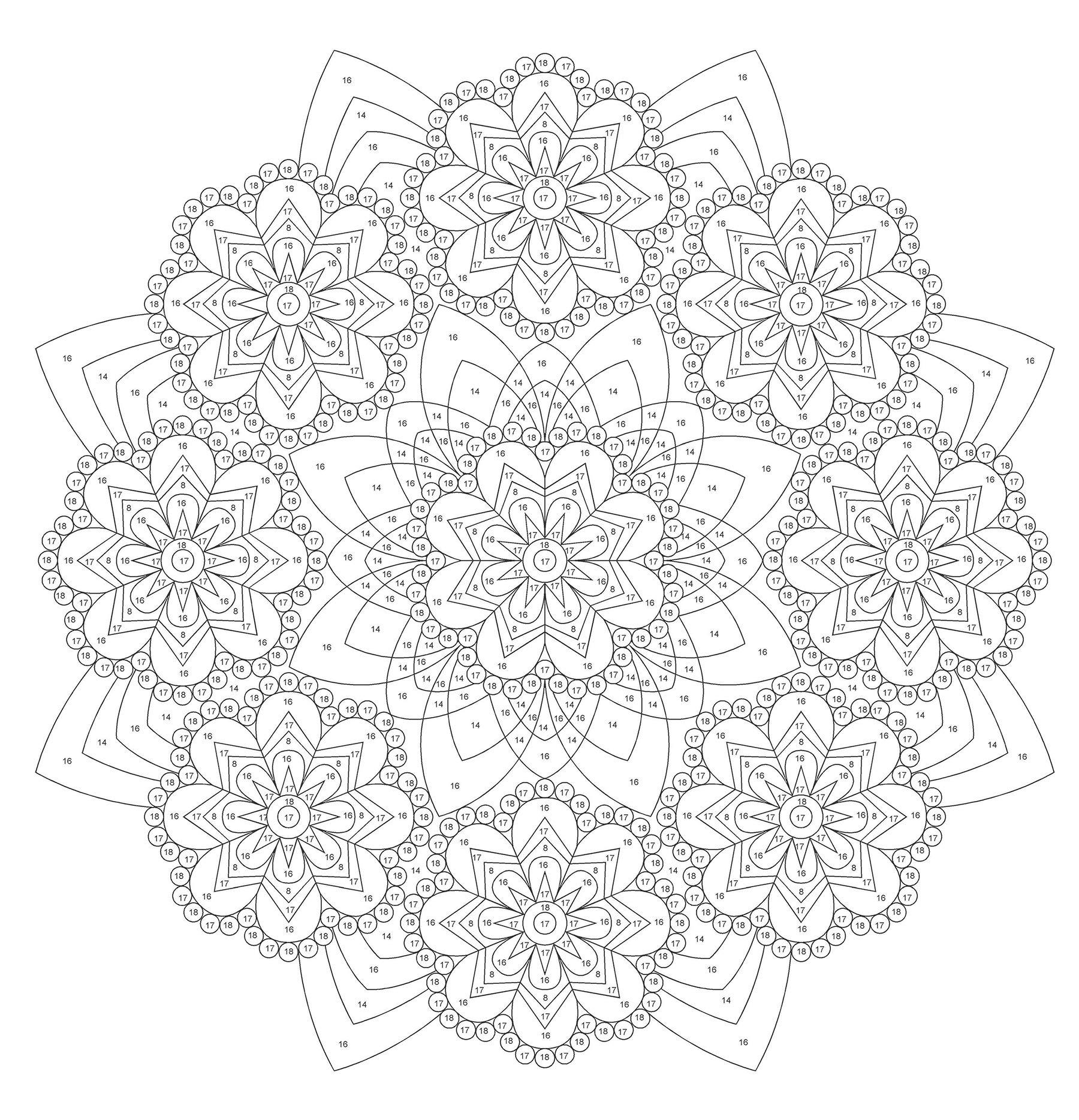 Creative Haven Mandalas Color By Number Coloring Book Adult Coloring Kerrigan Shala 0800759797974 Amazon Com Books