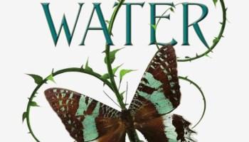 Water (Modern Faerietales #1) – Holly Black