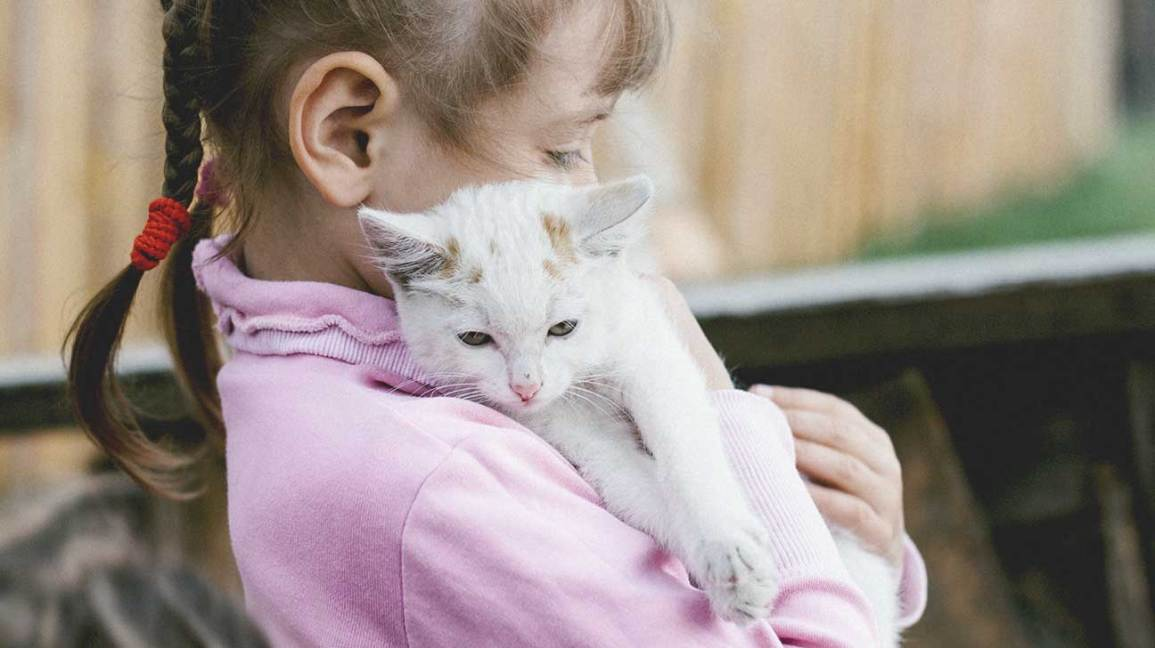 8 Best Pets For Kids What Type Of Pet Is Best For You