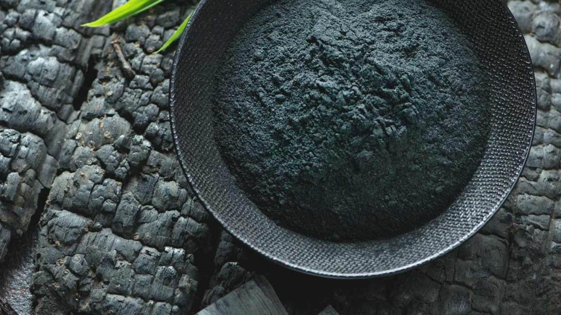 charcoal as growing media for plants