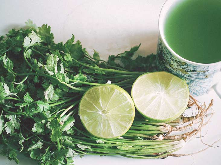 Treatment To Remove Metals From >> Heavy Metal Detox Diet Symptoms And Recommended Foods