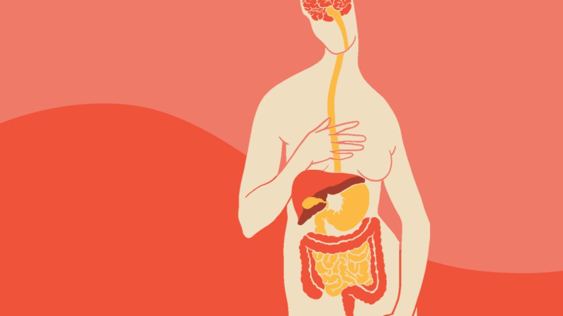Diet Not Connected To Gi Problems In >> The Gut Brain Connection How It Works And The Role Of Nutrition