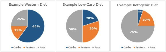 Carb, Fat and Protein Breakdown of Different Diets