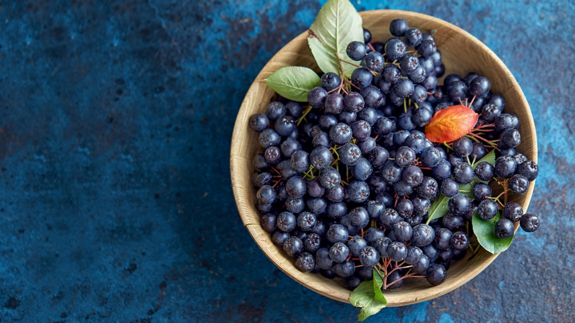 Image result for health benefits of aronia berry