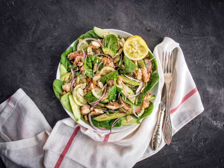 dukan diet cookbook free download