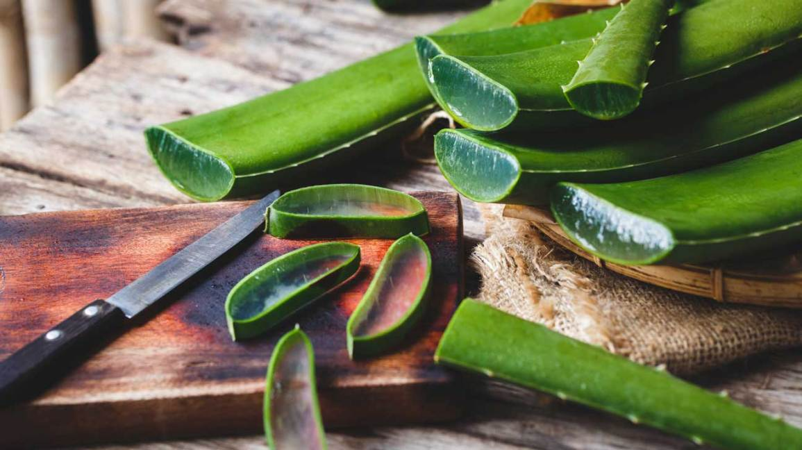 Blood Sugar Supplements Aloe