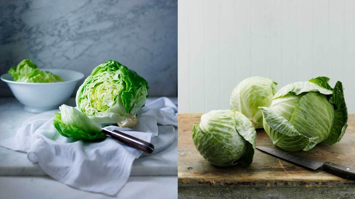Cabbage vs Lettuce