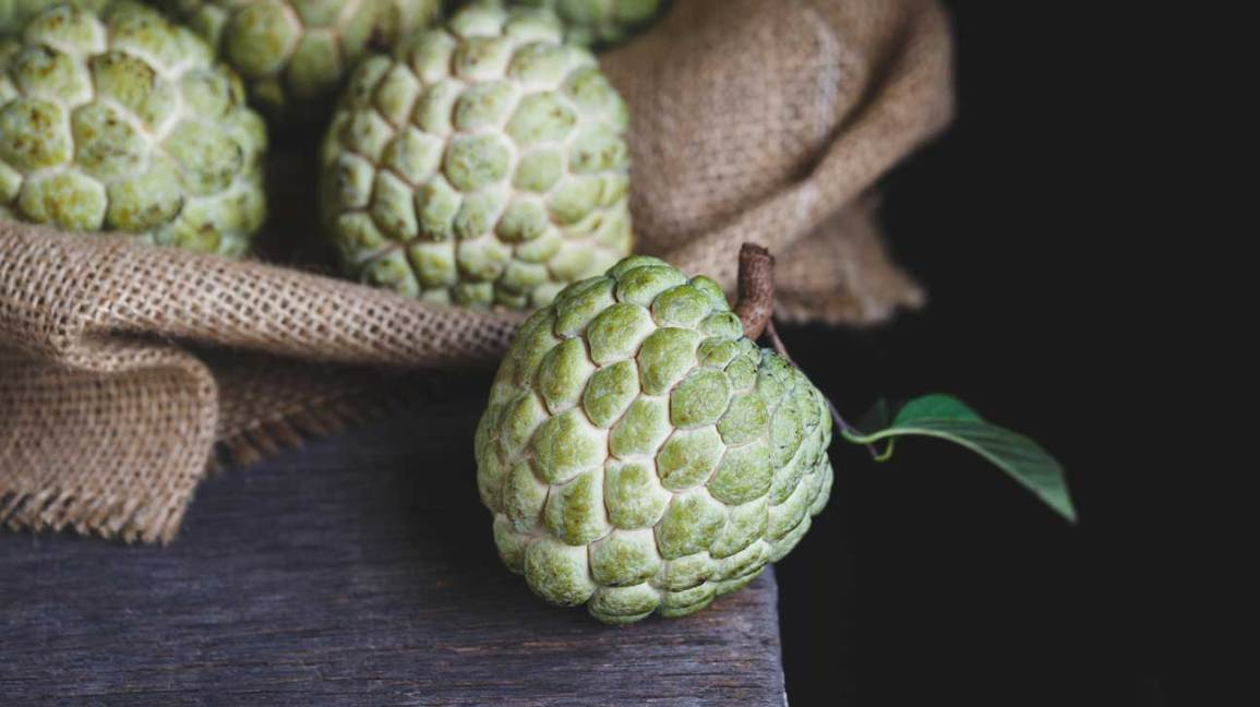 Image result for custard apple