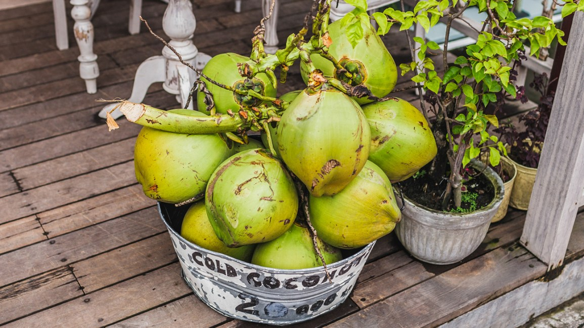 All You Need to Know About Green Coconut