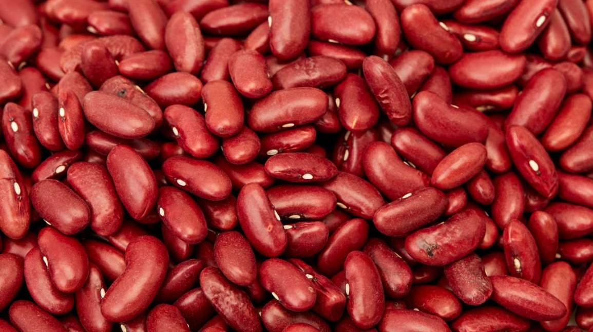 Kidney Beans 101: Nutrition Facts and Health Benefits