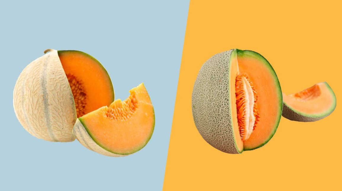 Muskmelon Vs Cantaloupe What S The Difference Nutrition facts cantaloupe serving size: muskmelon vs cantaloupe what s the