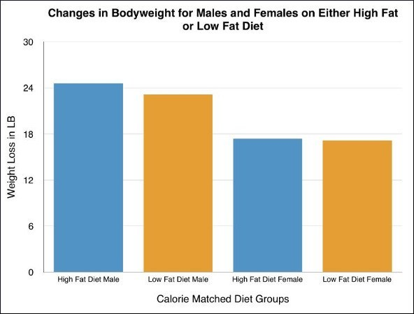 does diet composition matter for weight loss