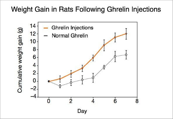 ghrelin levels