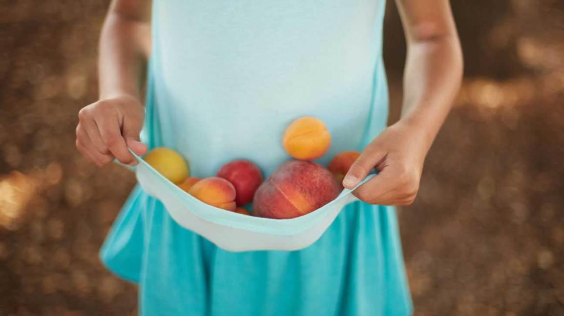 Peach vs Apricot
