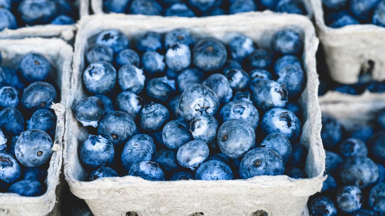 blueberries blueberries vine