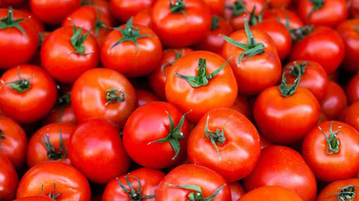 Tomatoes 101: Nutrition Facts and Health Benefits