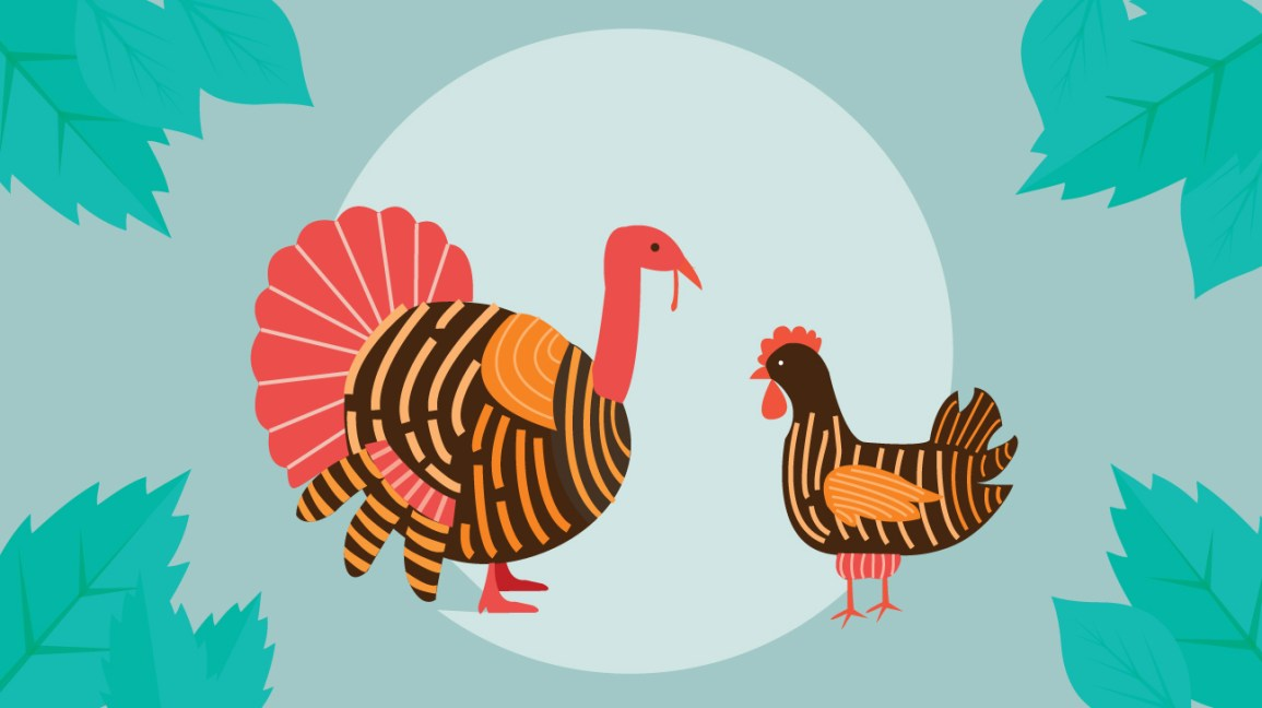 Turkey vs Chicken: Which Has More Protein?