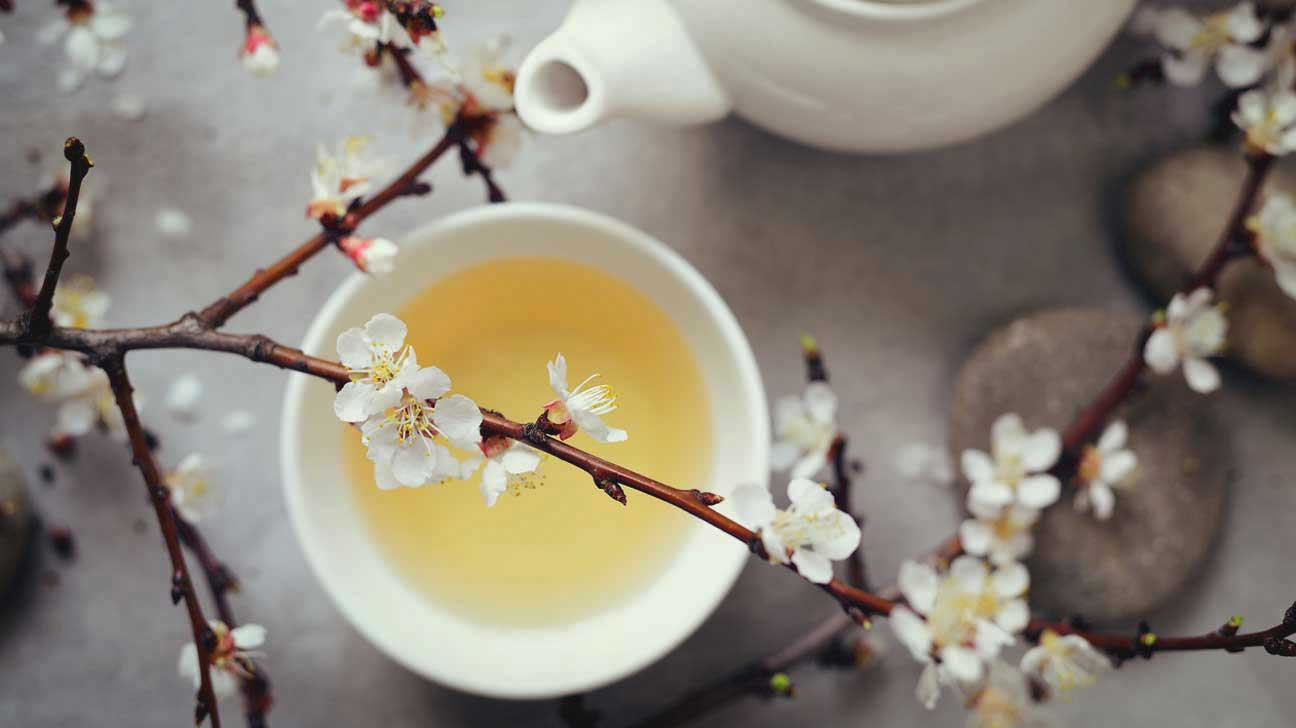 What is chinese white tea good for weight loss