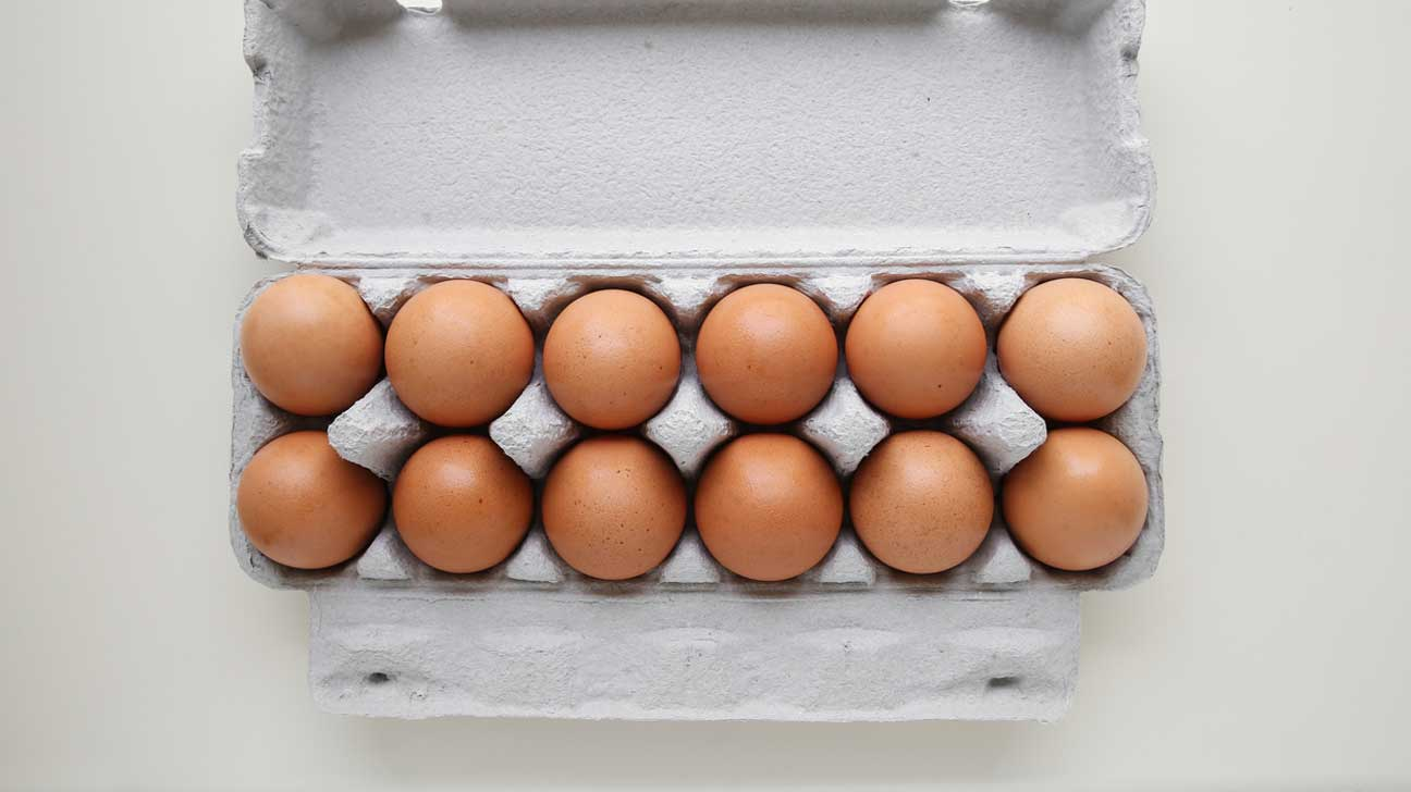 first chicken egg