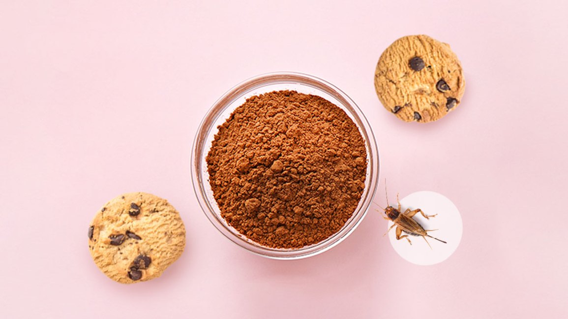 Cricket Flour: Protein Count, Nutrients, Taste, and Recipes