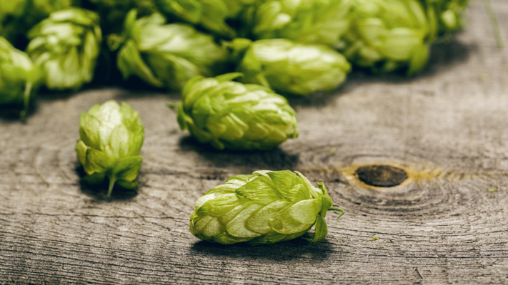 health and hops