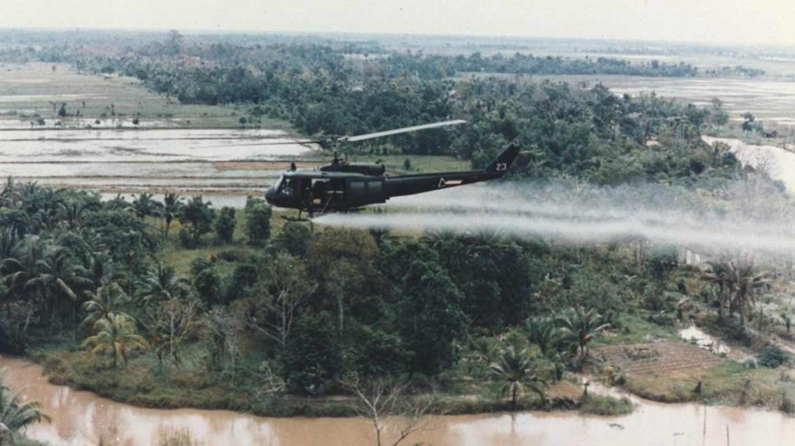 agent orange lasting effects