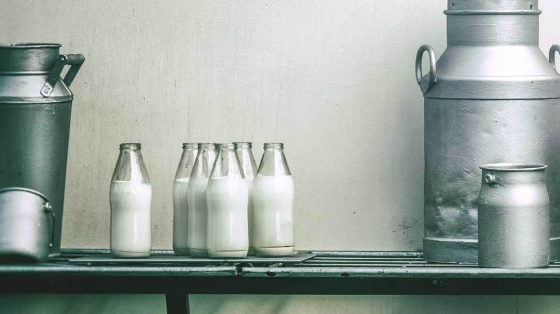 Rheumatoid Arthritis and Bacteria in Beef, Milk
