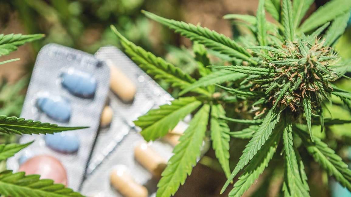safest drugs