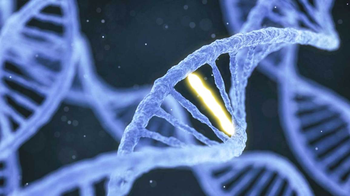 cancer human genetic engineering)