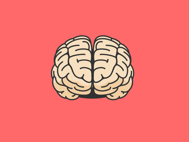 Several Parts Of Your Brain Help You >> Brain Function And Anatomy Of Parts Diagram Conditions Health Tips