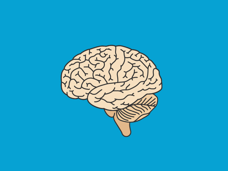 Pineal Gland Function: What You Should Know