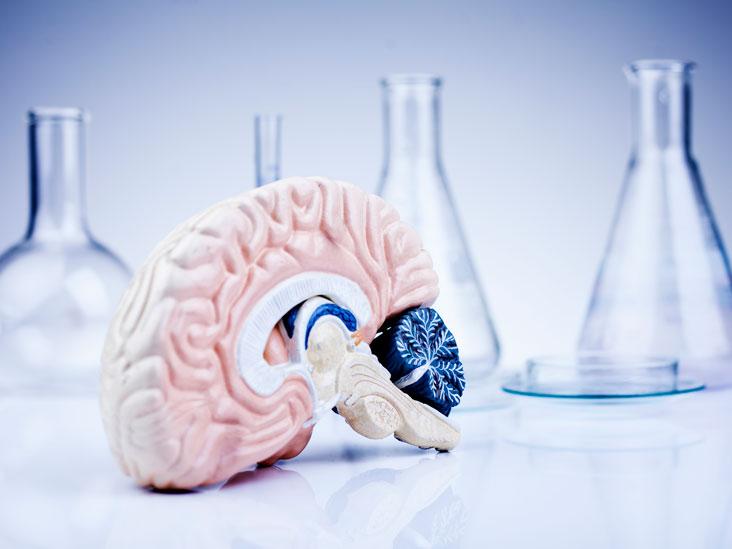 Síntomas del tumor cerebral tamil