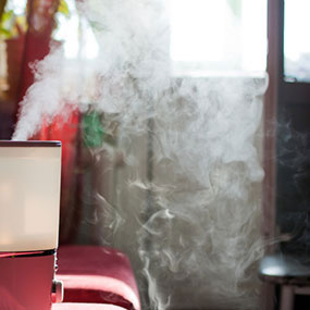 stuffy nose humidifier