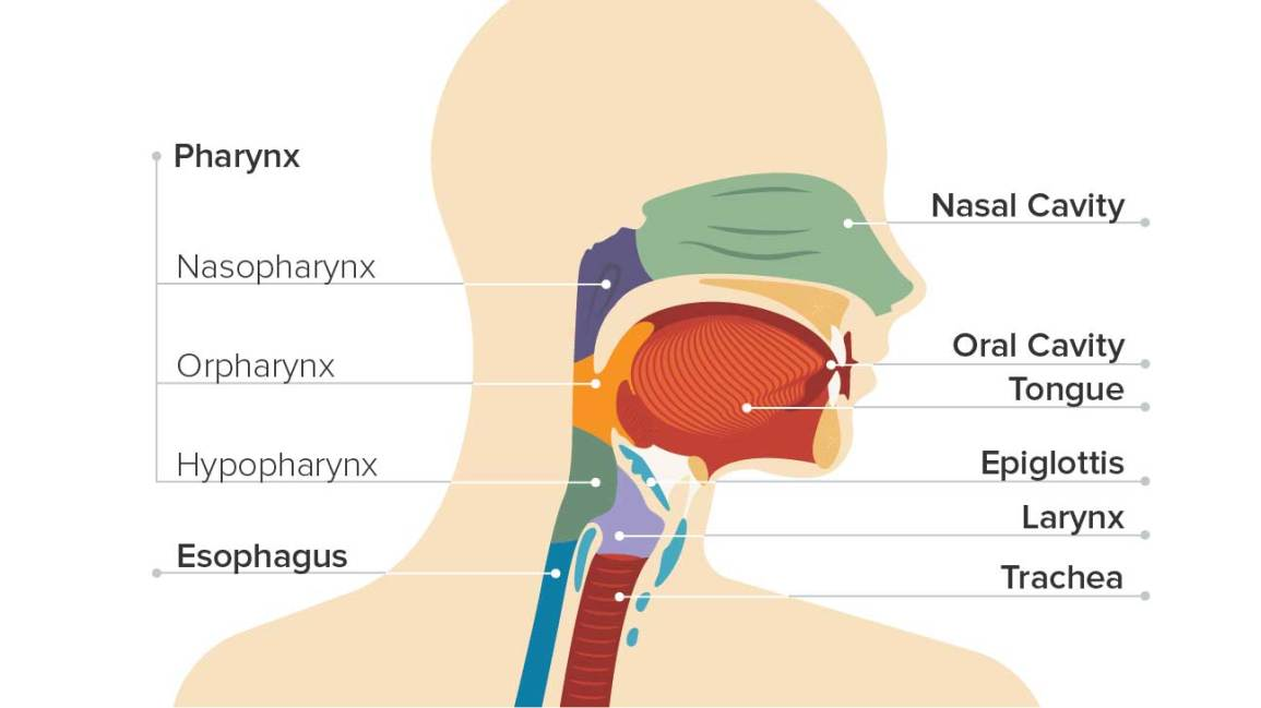 different types of throat cancer