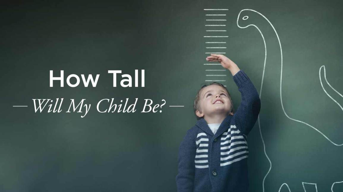 How Tall Will My Child Be: Predicting Height