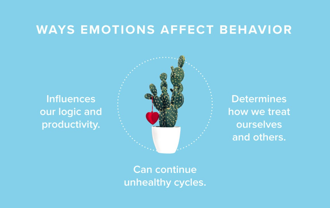 How Emotions Affect Learning Behaviors >> The No Bs Guide To Mastering Unwanted Emotions