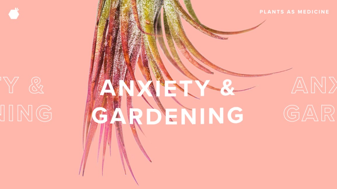 gardening for anxiety