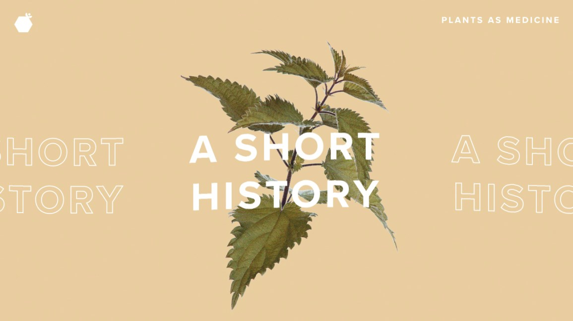The Short History of Plants as Medicine