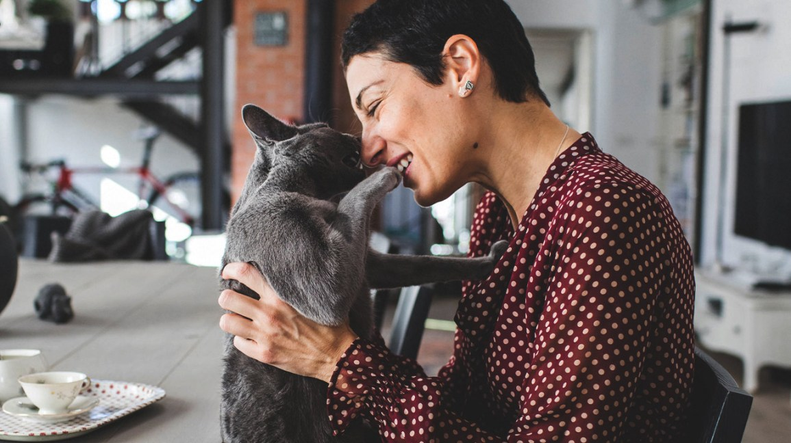 woman rubbing noses with a gray cat