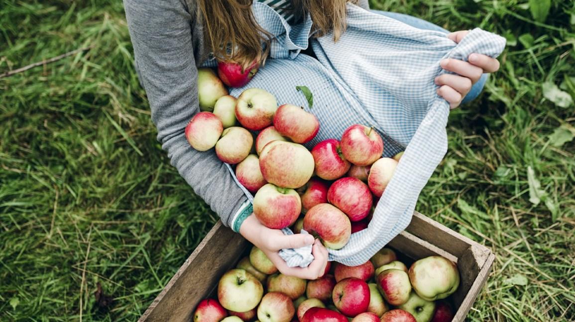 6 Beneficios Comprobados del Vinagre de Manzana