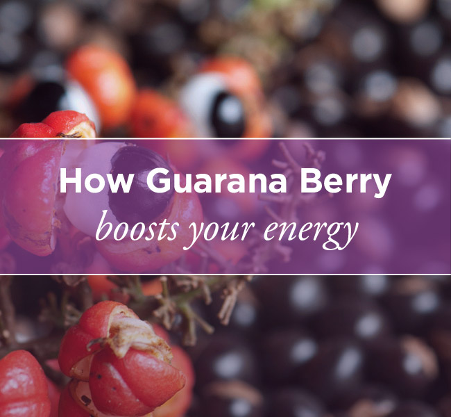 guarana berry