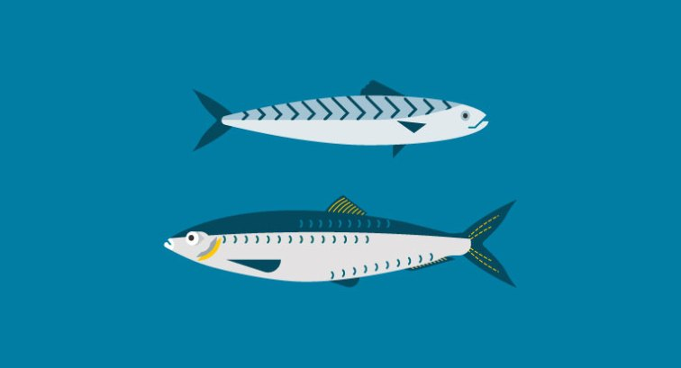11 Evidence-Based Health Benefits of Eating Fish