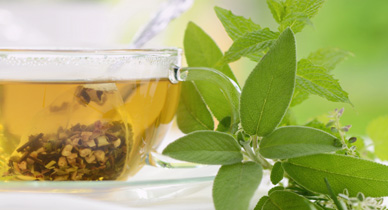 Herbal Teas for Cholesterol Management: Know the Facts