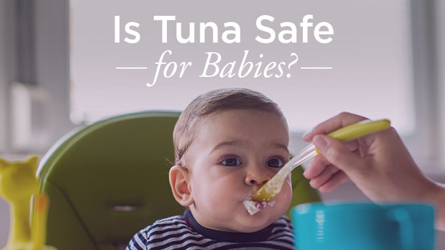 7db6a2ed7f9a6 Can Babies Eat Tuna: Risks and Benefits