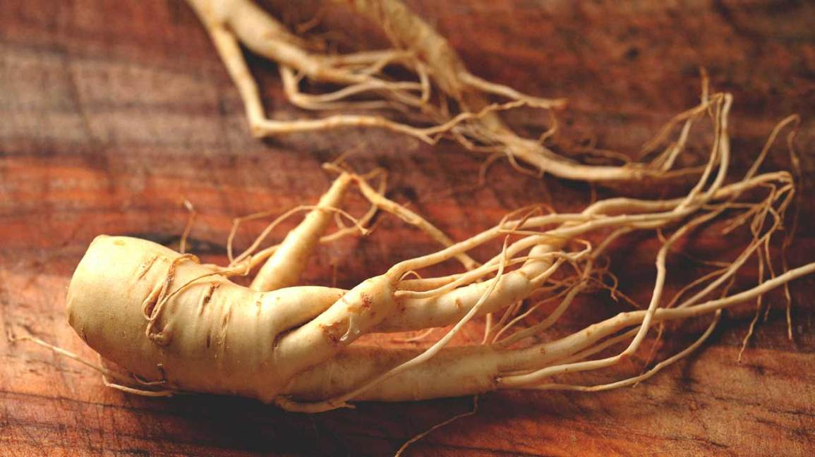 Ginseng and Pregnancy: Is It Dangerous?