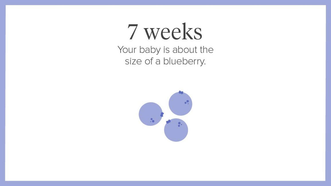 7 Weeks Pregnant: Symptoms, Tips, and More