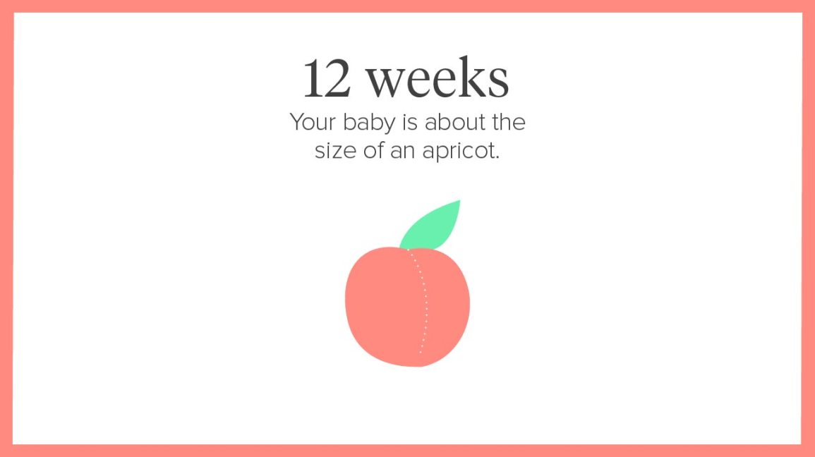 12 Weeks Pregnant: Symptoms, Tips, and More