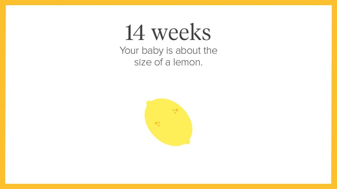 14 Weeks Pregnant: Symptoms, Tips, and More
