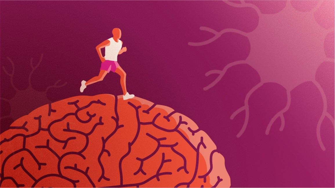 ms brain health strategies