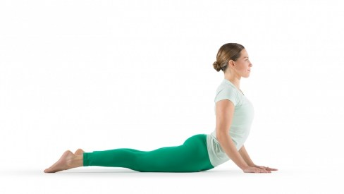 Image result for . Cobra Pose